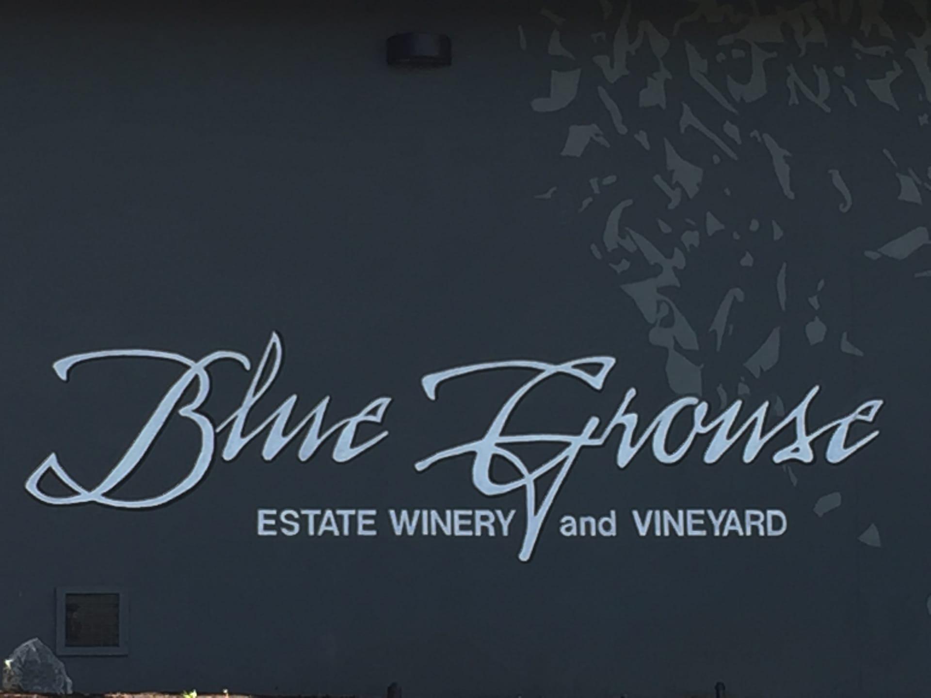 blue-grouse-01